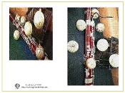 Greeting Card - Bassoon